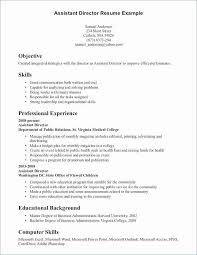 basic computer skills for resumes 29 luxury describe your computer skills resume sample gallery