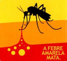 Resultado de imagem para mosquito da febre amarela