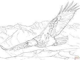 Small Picture Bald Eagle Soaring coloring page Free Printable Coloring Pages