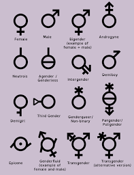 Different Genders Chart Pin On Gay Pride