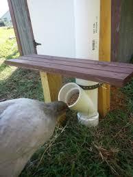 DIY PVC Chicken Feeder My Pet Chicken Blog