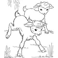 Small Picture Coloring Pages Of Farm Animals And Their Babies Archives Mente