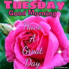 tuesday good morning have a great day