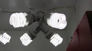 Homemade Cfl Grow Light Fixture How To Build A 184 Watt Cfl Grow Light For Overwintering Plants