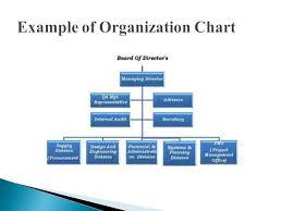 Organization Structures Ppt Video Online Download
