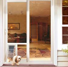 how to install a pet door in a wall uncommon exterior door with pet door exterior how to install a pet door in a wall