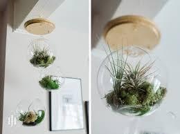 diy hanging airplant terrarium with capitol romance on jenn er design co