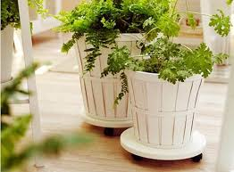 5 favorites rolling plant stands