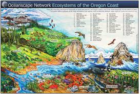 oregon coast living its all out therein living color news lincoln county