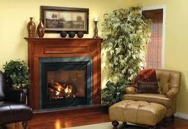 propane tank fireplace fireplaces inserts propane tank fireplace installation