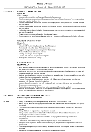 Actuarial Analyst Resume Actuarial Analyst Resume Samples Velvet Jobs 1