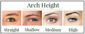 the arch height refers to how lifted the arch shape is from the bottom of the eyebrow