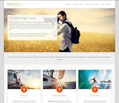 best wordpress themes and templates for  intuition wp blog theme