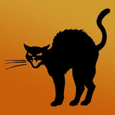 halloween black cat. Brilliant Halloween Halloween Symbols U2013 The Black Cat From Ancient Egypt To The Witches  Broomstick And O