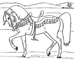 Small Picture trotting arabian horse coloring page Coolagenet