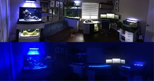 Office aquariums Reception Diybuildday And Night Pano Of My Fish Roomoffice Customaquariumcom Day And Night Pano Of My Fish Roomoffice Aquariums