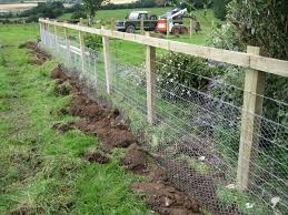 electric fence for garden. Fine For Electric Fence For Garden Marmot And For A