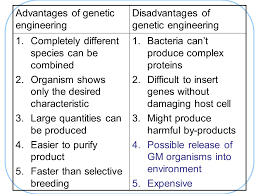 genetic engineering advantages and disadvantages essay genetic engineering advantages and disadvantages essay