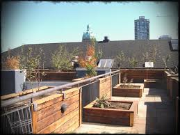 rooftop furniture. House Pictures Sample Waplag Home Apartments Design Concept Roof Garden Furniture Ideas And Modern With Rooftop