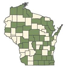 Frangula alnus - Online Virtual Flora of Wisconsin