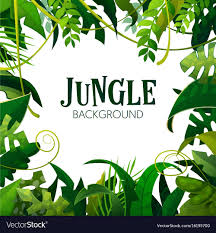 jungle background. Brilliant Jungle Jungle Tropical Leaves Background Vector Image On Background G