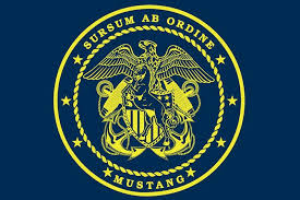 Cwo Navy Ldo Cwo Moisture Wicking Mustang Pt Shirt U S Navy Limited Duty