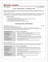 the abundant success coach my resume samples   the abundant    vp operations after