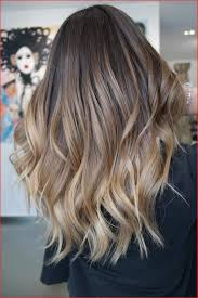 Dark To Light Ombre Hair Stylish Brunette Ombre Hair Color Picture Of Hair Color