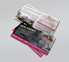how many flyers should i put in a university campus without cruelty flyers london animal justice project