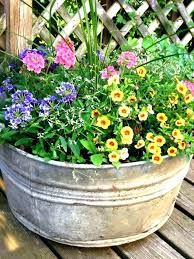 container ideas for full sun best plants hanging outdoor flower pot plant containers flowers pots in