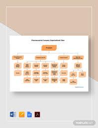 Pharmaceutical Company Organizational Chart Free Pharmaceutical Company Organizational Chart Template