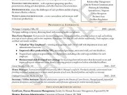 Resume Templates Libreoffice Resume And Cover Letter Resume And