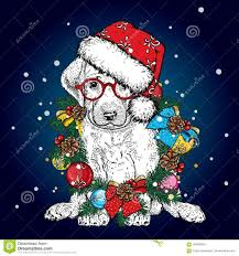 Thoroughbred Christmas Lights 2018 Beautiful Dog In Christmas Wreath Lovely Thoroughbred Puppy