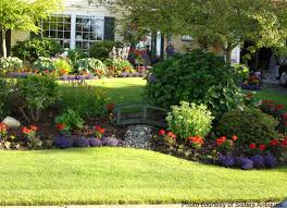 Dry bed stream with colorful landscaping