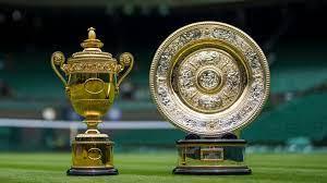 Wimbledon Finals: Novak Djokovic vs Matteo Berrettini - The Sports Habit