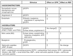 Gfr Rate Chart 25 8 Endocrine Regulation Of Kidney Function Anatomy And