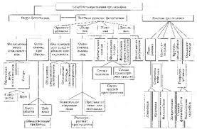 Судебно экспертные методики и их классификация курсовая Судебно экспертные методики и их классификация курсовая файлом
