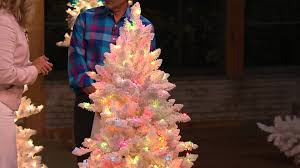 bethlehem lighting. Bethlehem Lights 9\u0027 Flocked Bedford Spruce Christmas Tree With Dan Wheeler Lighting R