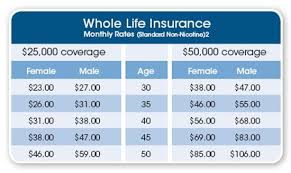 Fixed Term Life Insurance Quotes Interesting Fixed Term Life Insurance Quotes Enchanting Fixed Term Life