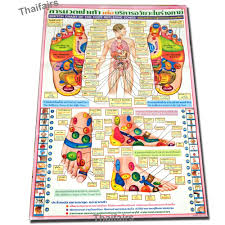 Thai Foot Reflexology Chart Poster Sketch Chart Of The Foot Reflexive Zones By Traditional Thai Foot Massage Reflexology