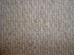 wool carpet made natural sheep texture