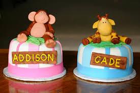 1st Birthday Cake Ideas Twins Boy Girl Mt Hood Wellness Decor