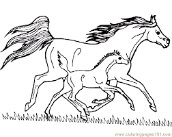 Small Picture Coloring Page Horse Pictures To Color Online For Kids On Computer
