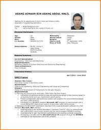 Professional Resume Format Pdf Sidemcicek Com