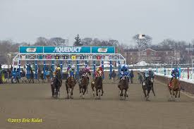 Equibase Full Charts Equibase To Provide Voided Claims Information Horse Racing