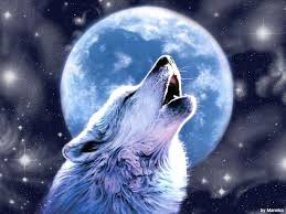 wolf howling wallpaper.  Howling Wolves Howling Wallpaper Wallpaper Wallpaper Hd  In Wolf 1