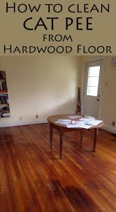 remove quickly cat urine out of your hardwood floor with natural s