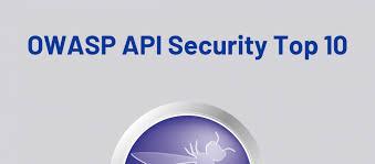 What Is The Owasp Api Security Top 10 Salt Security