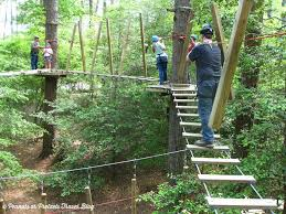 treetop family adventure obstacles