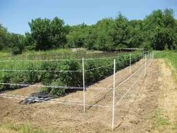 electric fence for garden. Exellent For Gallagher Power Fence Company Deer Fence Set Up To Electric For Garden C
